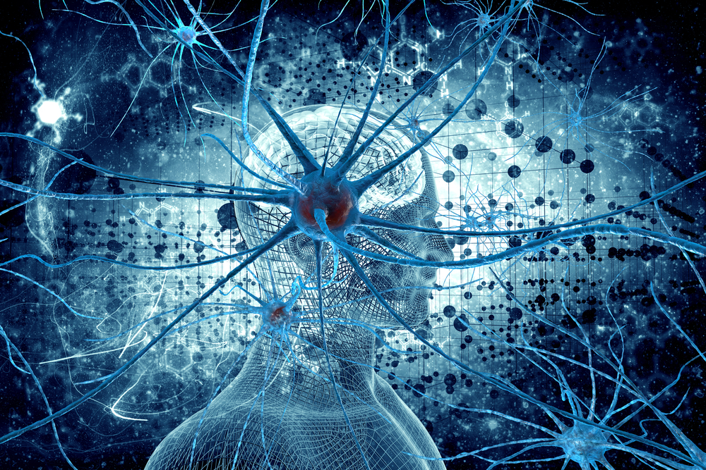 Study Identified Specific Neurons Responsible for Daily Life Memories