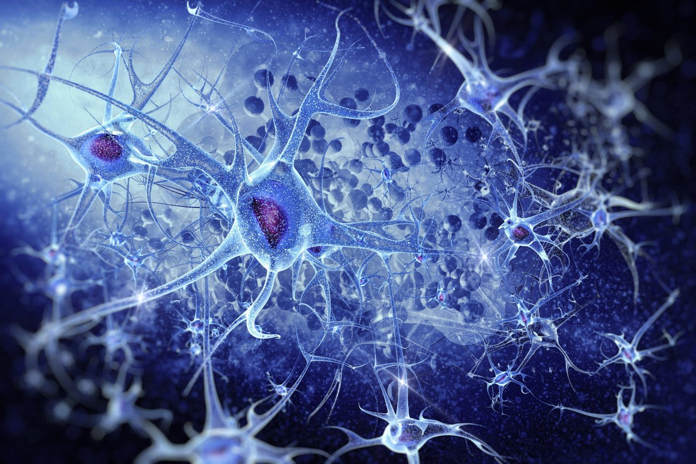 New Study Data Released on Therapeutic Agents For a Range of Brain Diseases