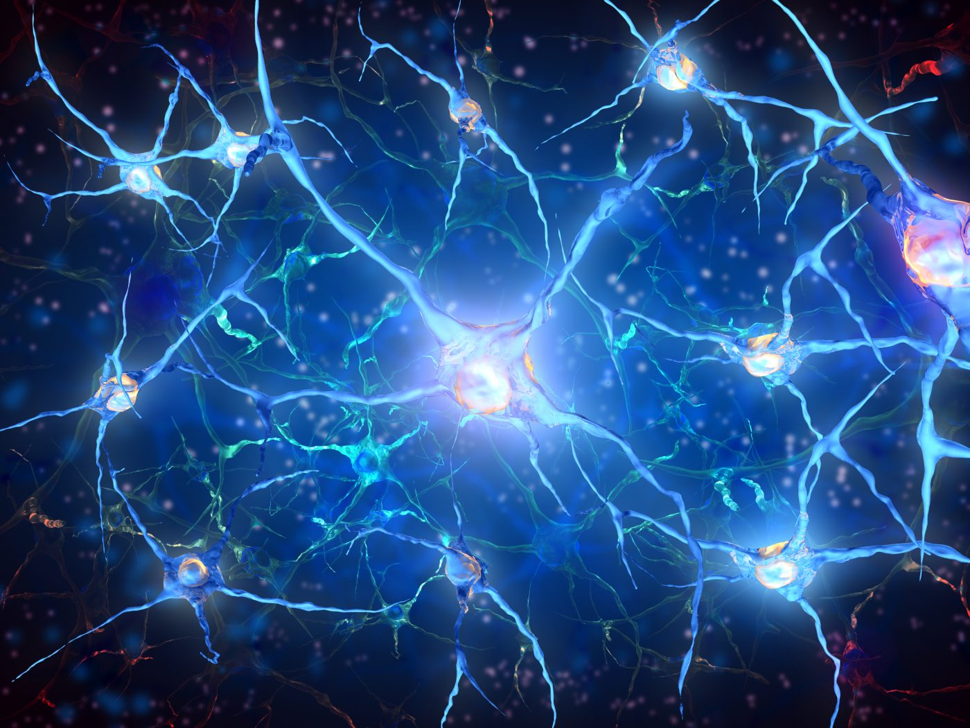 Parkinson's Mouse Model Hints at Possibility of Neuron ...