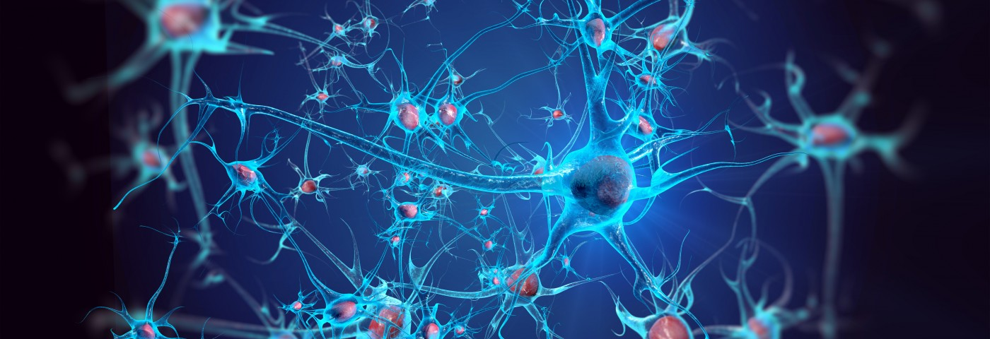 Neuronal Changes Seen in Parkinson's Mouse Model Well Before Disease Symptoms