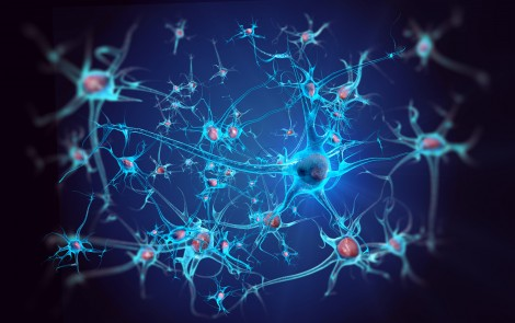 Parkinson's Protein Alpha-Synuclein Blocks Brain Growth Factor, Research Finds