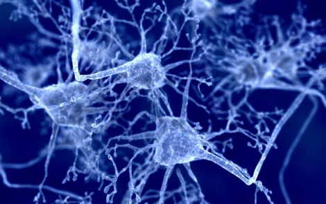 Tiny Changes in Alpha-synuclein Protein Could Be an Important Driver in Parkinson's, Study Suggests