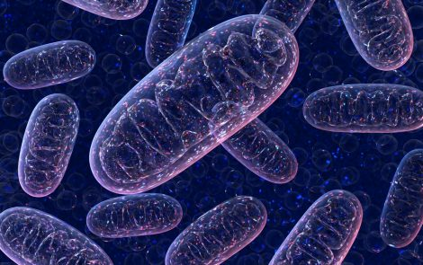 Lowering Level of Protein Could Prevent Mutation From Triggering Parkinson's, Study Suggests