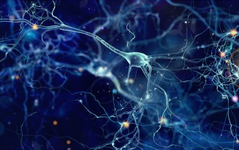 3-D Images of Mutated Protein Variations May Increase Understanding of Parkinson's
