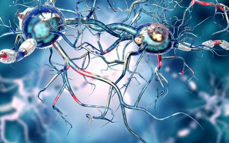 Another Protein Plays a Role in Spreading Harmful Alpha-synuclein in Parkinson's, Mouse Study Shows