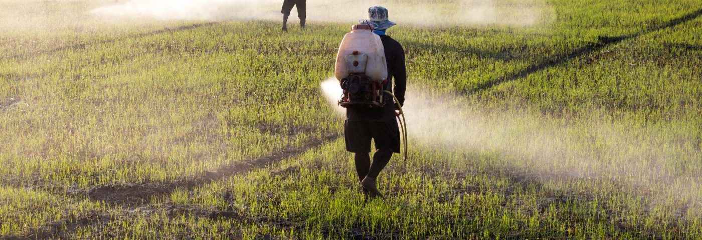 Researchers Unravel Link Between Herbicide Exposure and Parkinson's